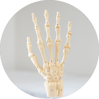 1500Carpal Tunnel Release