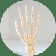 Hand & Wrist Procedures